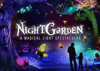 The NightGarden